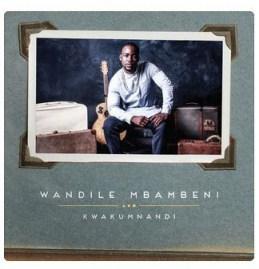 Wandile Mbambeni - Feelings Alone (Acoustic)